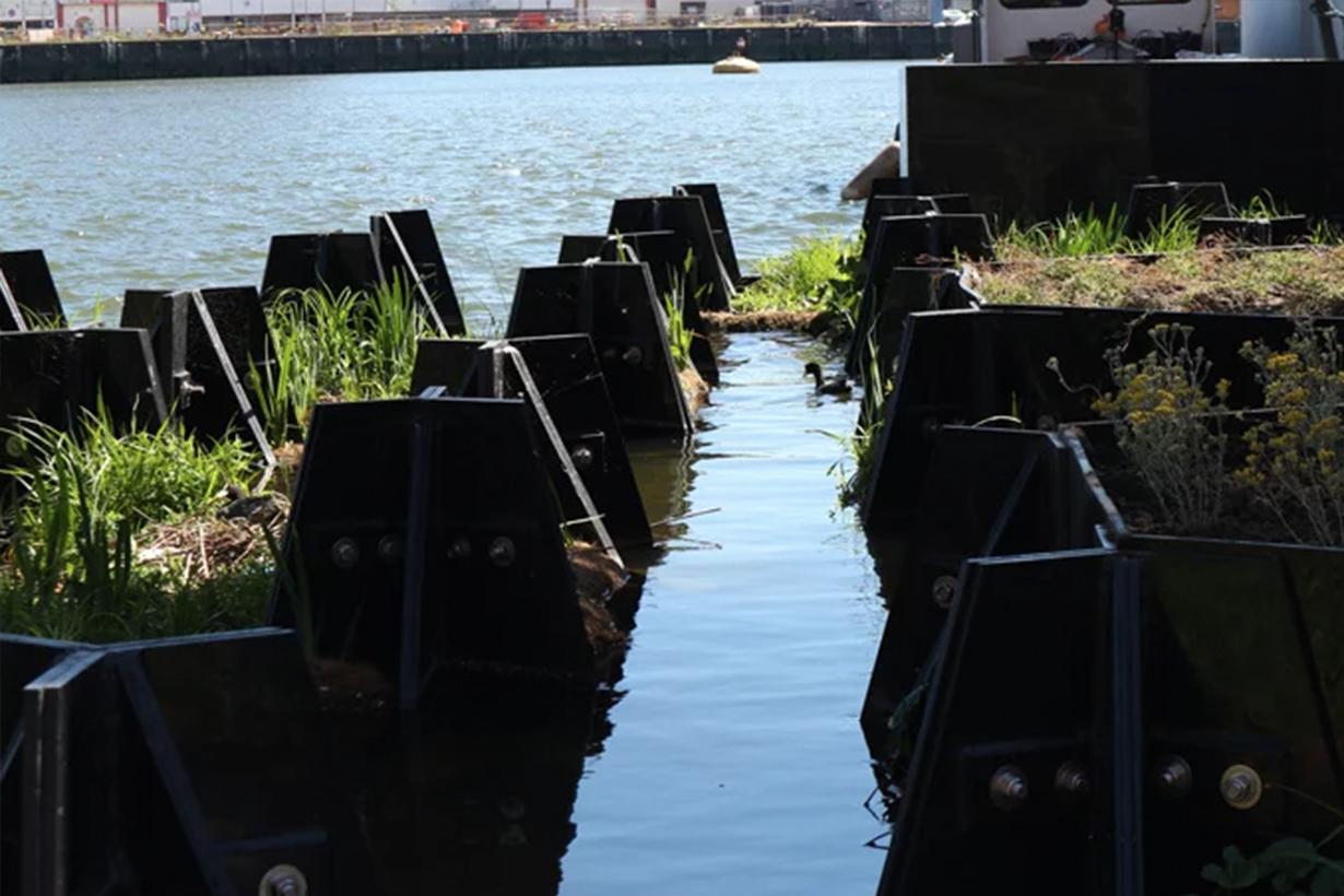 floating park6