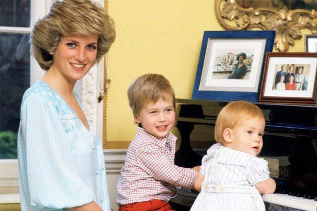 Princess Diana Prince William Prince Harry