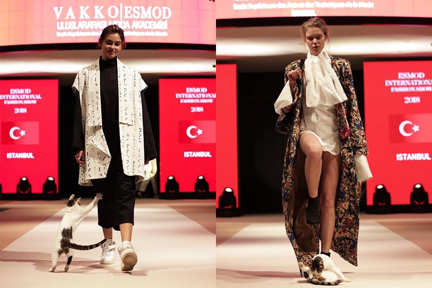 cat-walks-runway-istanbul-fashion-show