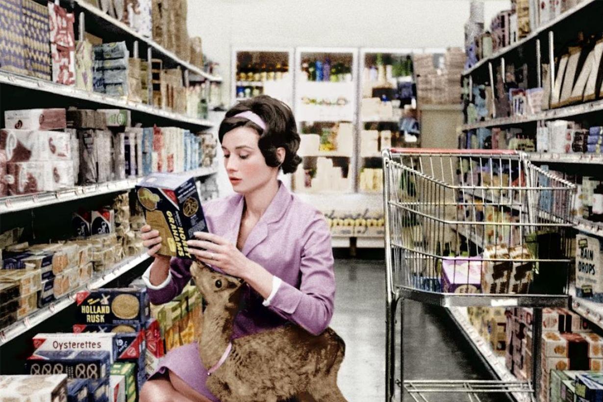 Audrey Hepburn Deer Supermarket