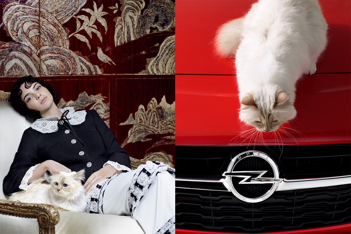 Choupette Kendall Jenner Opel Campaign