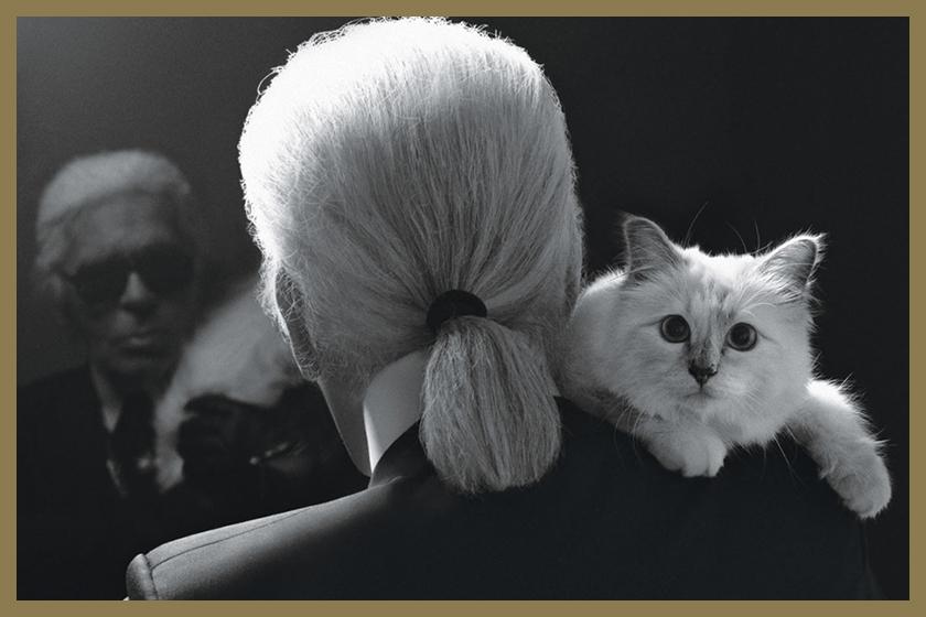 KARL-lagerfeld CAT Choupette