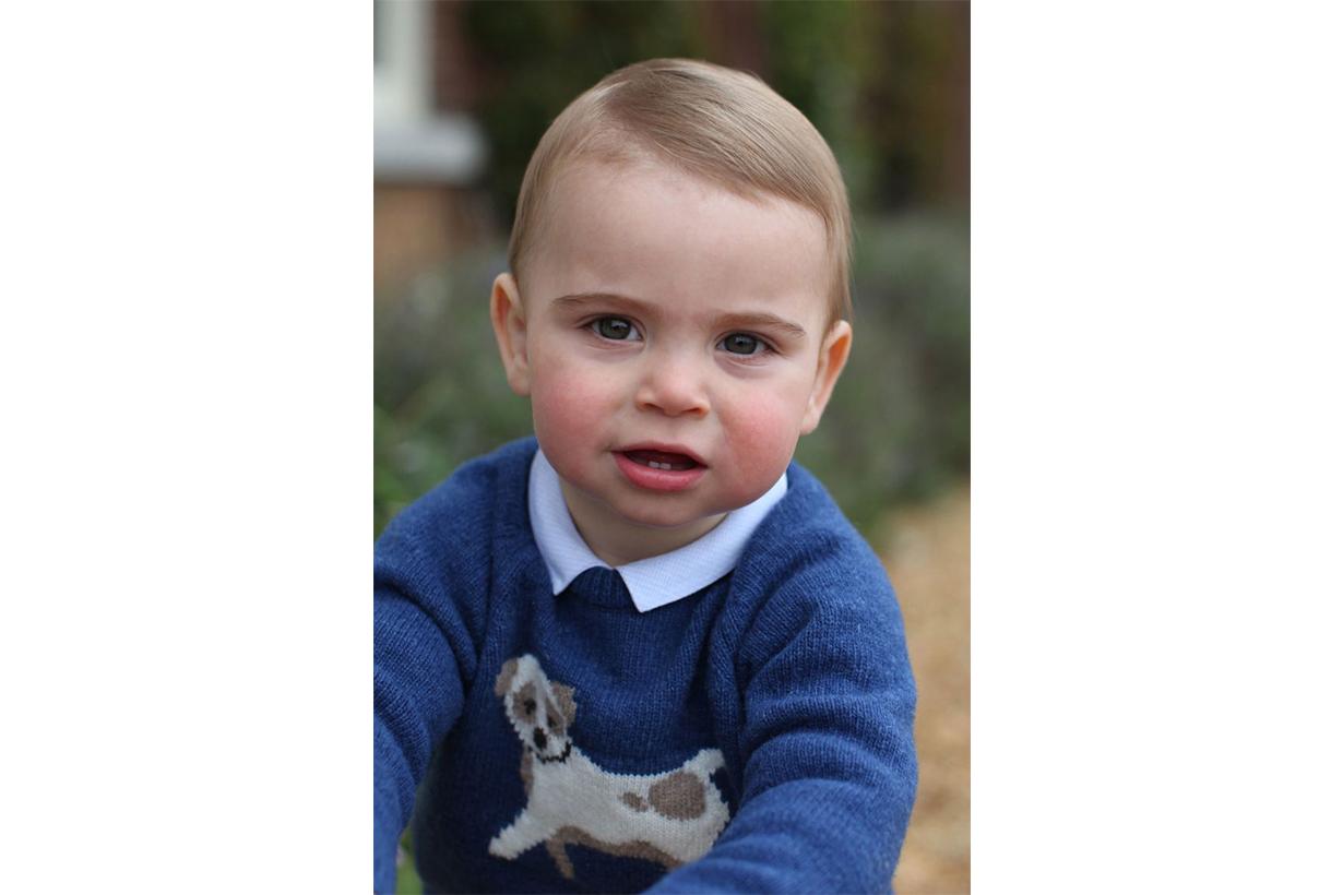 Prince Louis Birthday Photo Dog Sweater