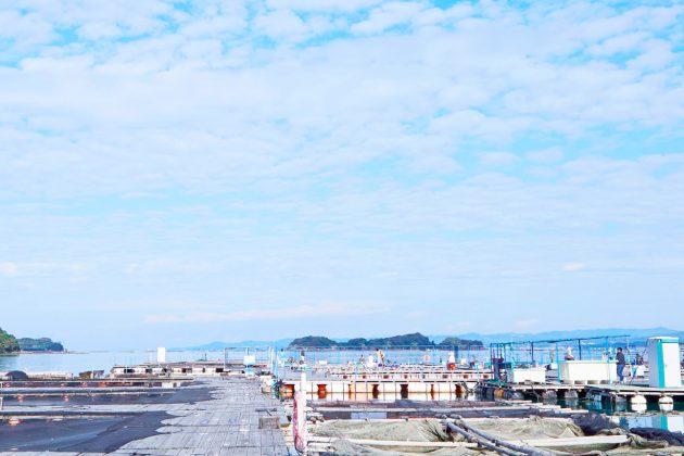tore tore park village Wakayama seafood market