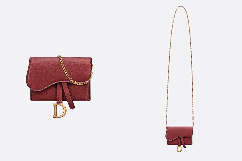 Dior Saddle Nano Pouch Colors
