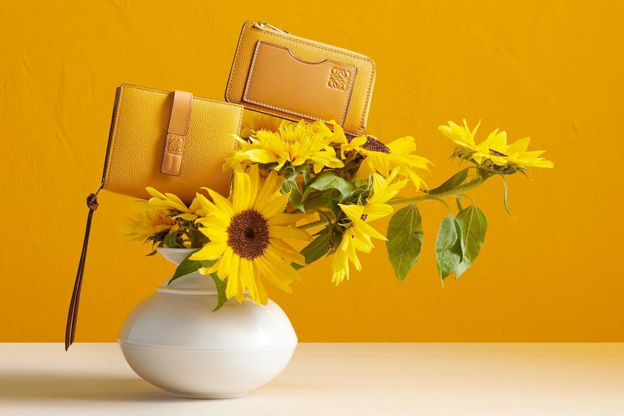 loewe wallet new color november sun flower Rosemary
