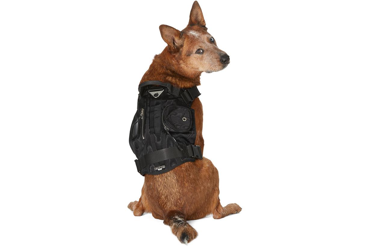 MARINE SERRE SSENSE Exclusive Black Multiple Pockets Harness