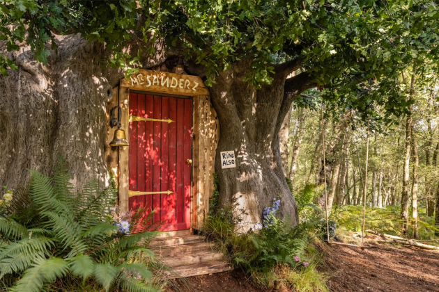 Disney-&-Airbnb-made-a-real-Winnie-the-Pooh-house-to-rent-03